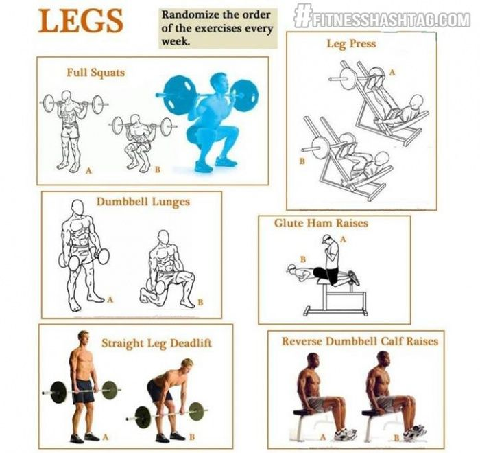 Leg Workout - Healthy Fitness Exercise Lunges Squats Deadlift  - PROJECT NEXT - Bodybuilding & Fitness Motivation + Inspiration