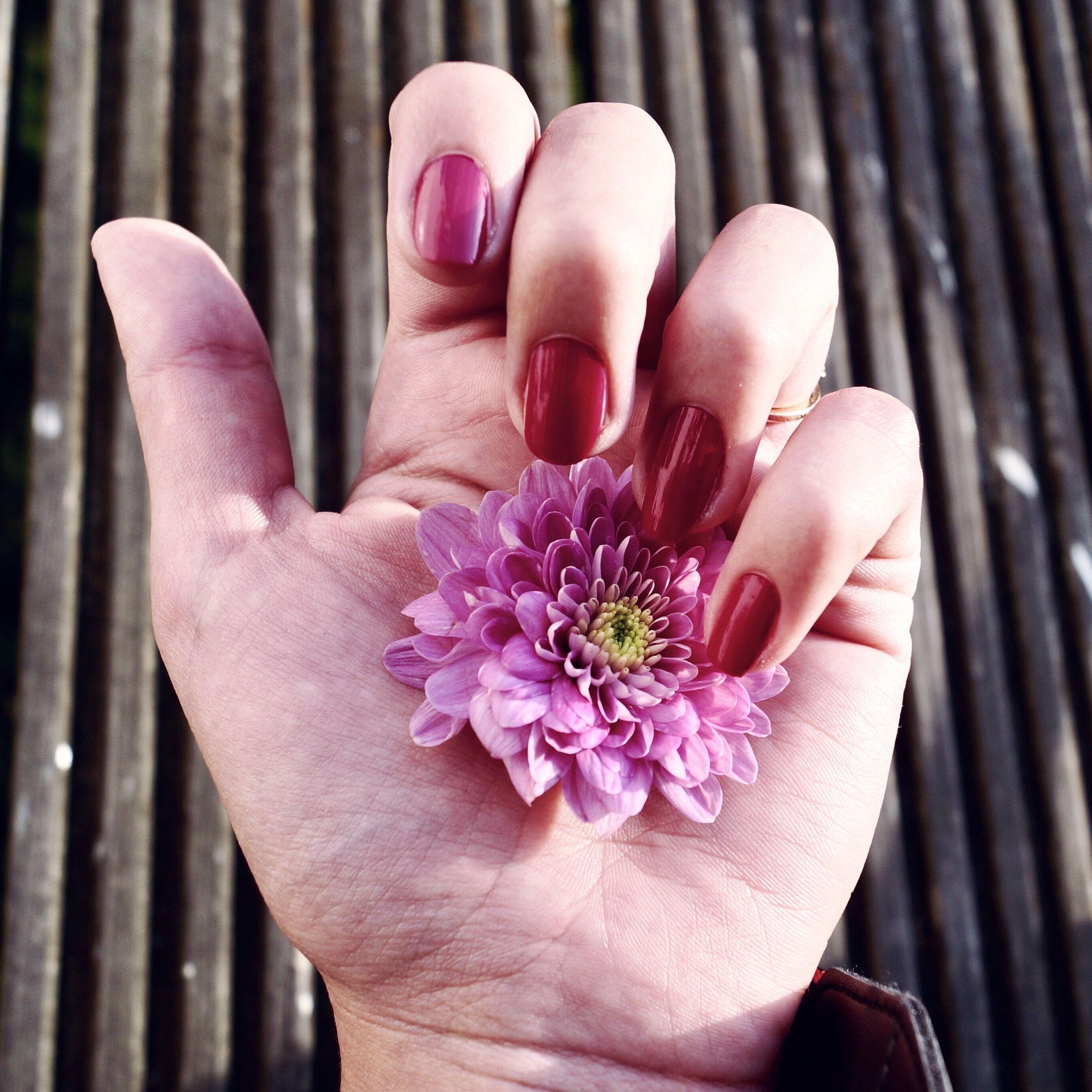 Beauty & Fashion jetzt auf meinem Blog - Nagellack: ICONails von ...