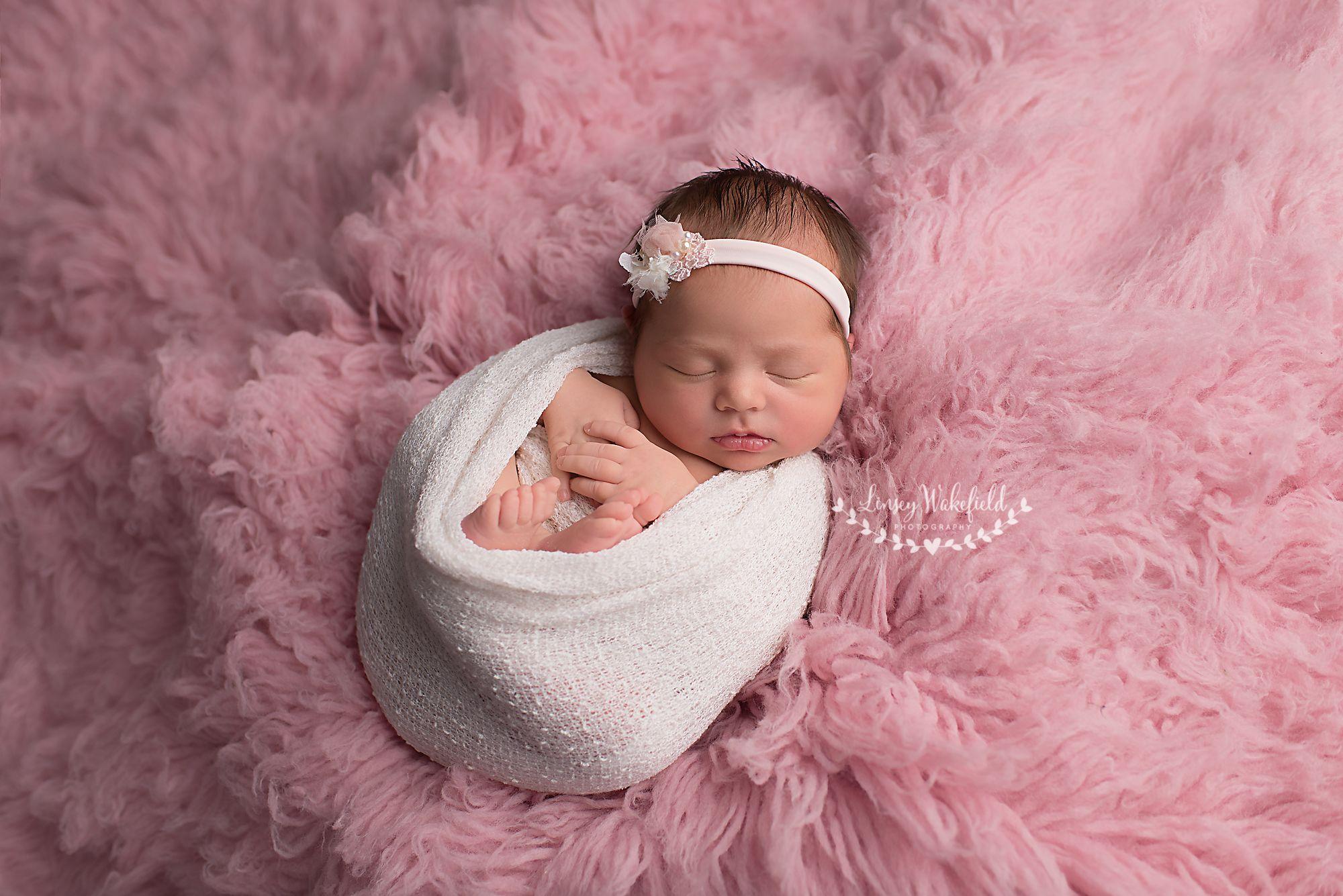 newborn, newborn girl, newborn photography, newborn posing, linsey ...