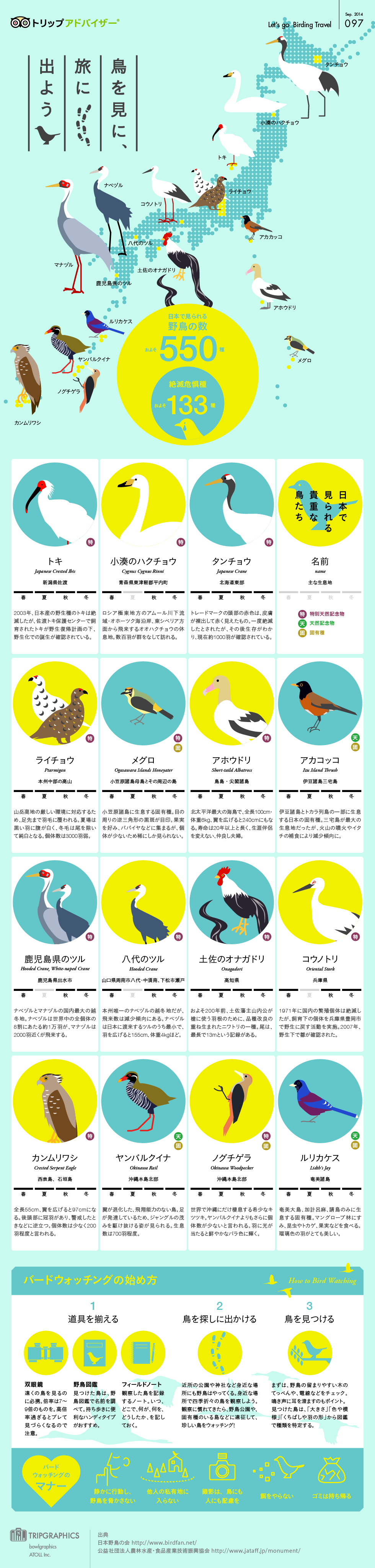 to see a bird  i will go out on a journey  infographic