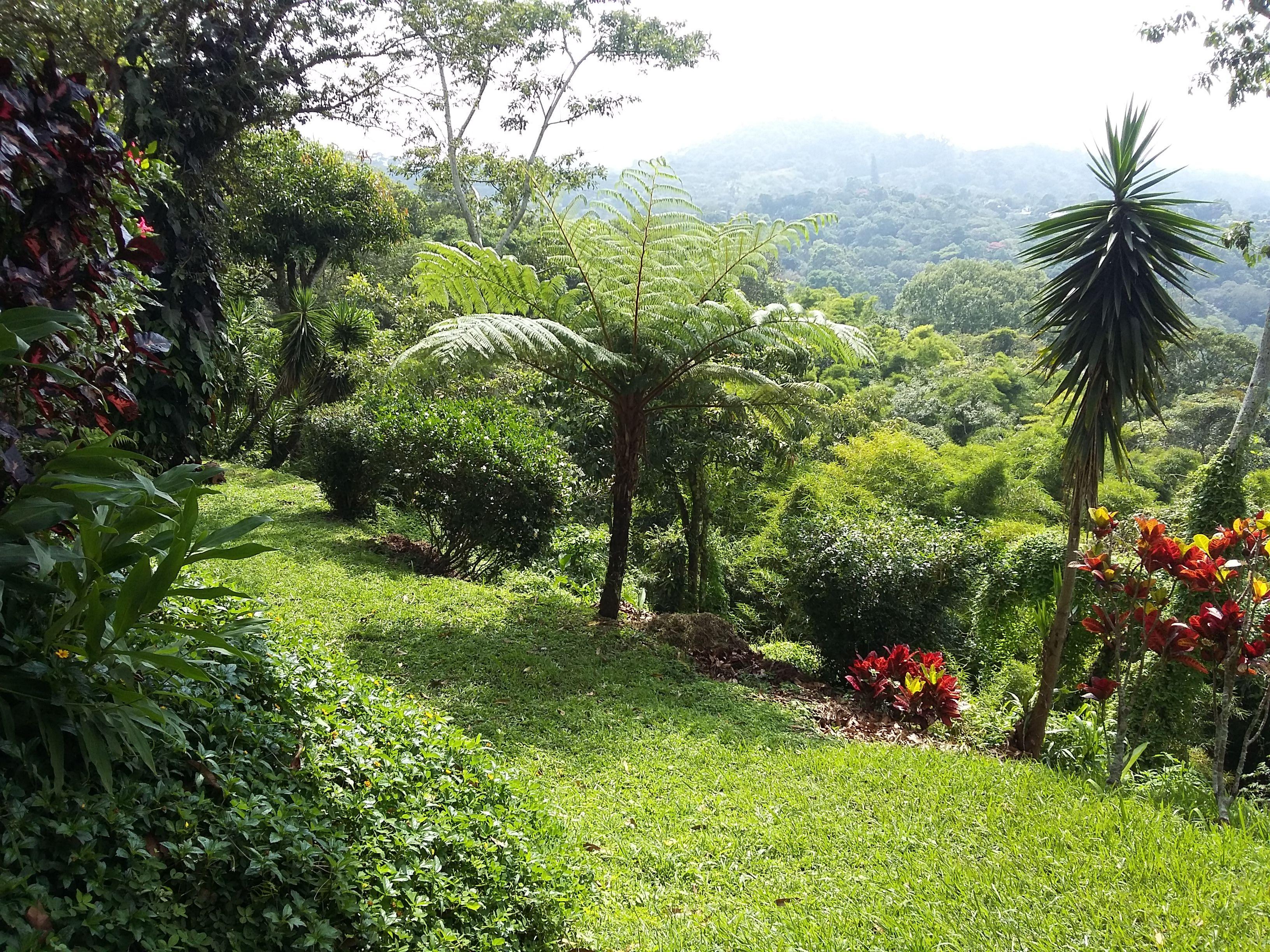 Pin On Casas Y Quintas En El Salvador