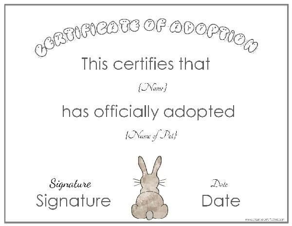 animal Bunny Pinterest Adoption certificate, Certificate and - Birth Certificate Template Printable