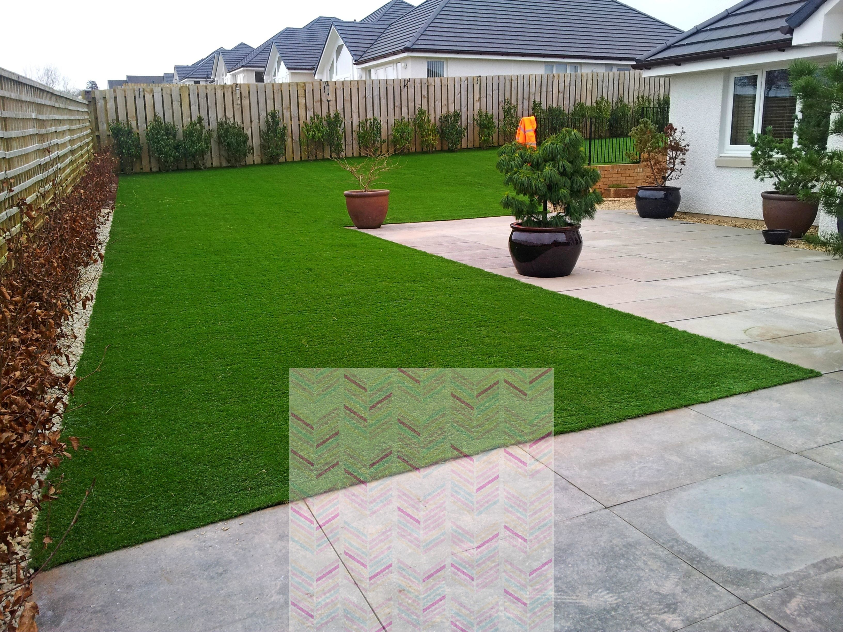 how long to water grass seed uk