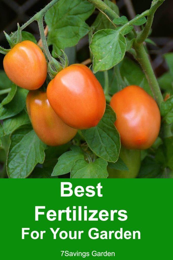 Best Fertilizers