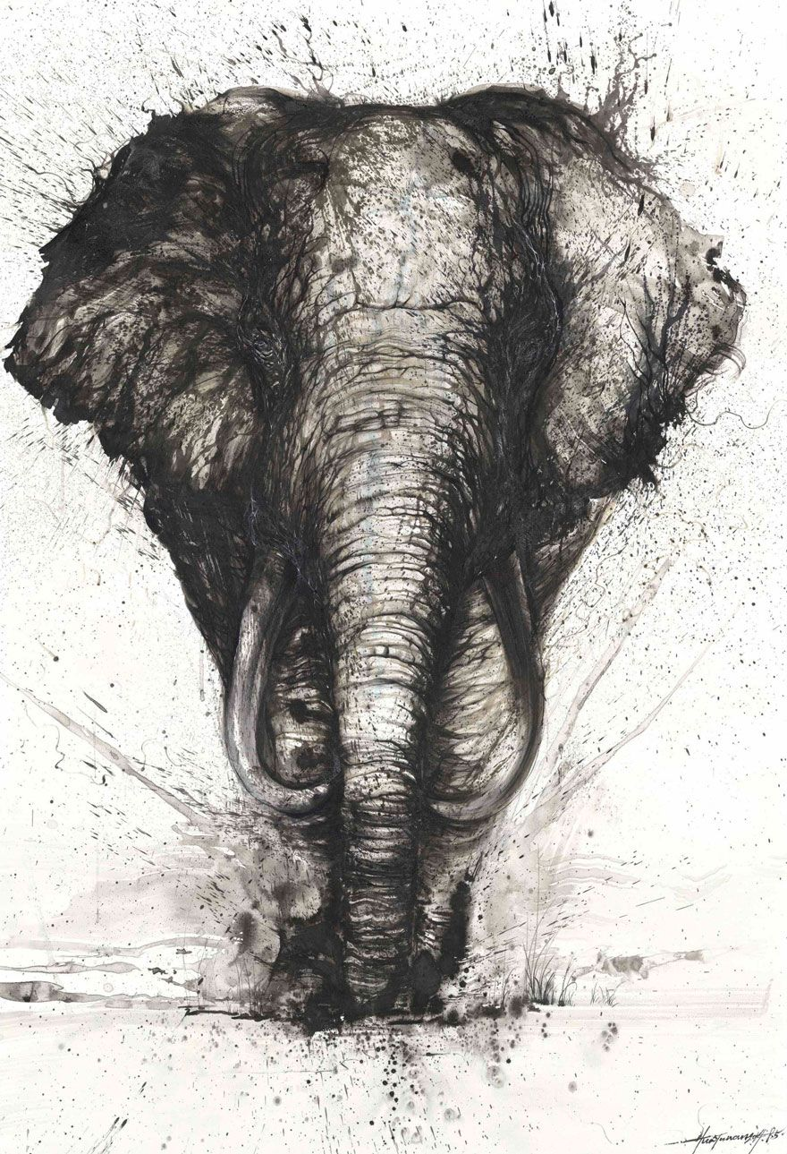 Splattered Ink Animal Portraits By Chinese Artist Hua Tunan Animal Art Splatter Art Elephant Art