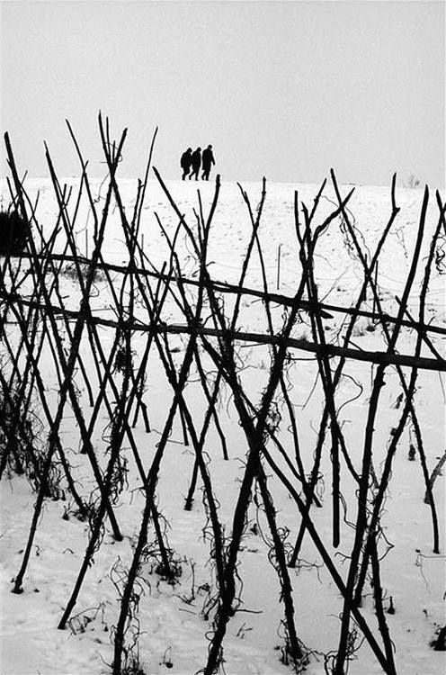 Winter in Holland, 1964