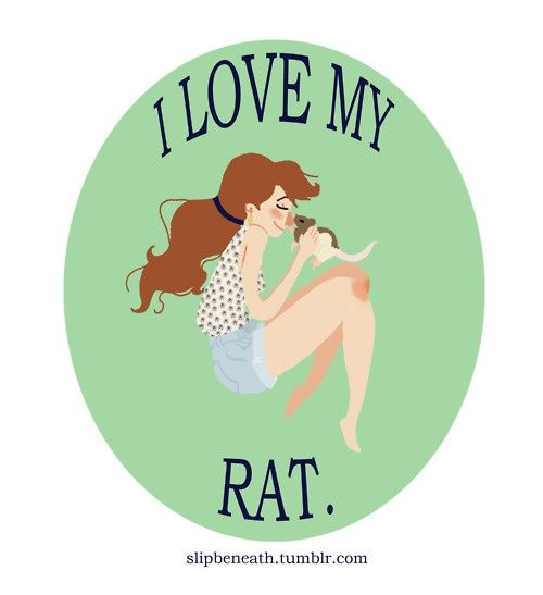 I love and miss my rats. They have a life span of 2-3 yrs typically.. could never be long enough.