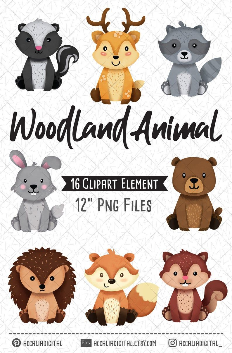 Woodland Animals Clipart Raccoon Forest Friends Sticker Etsy Woodland Animals Animal Clipart Woodland Clipart