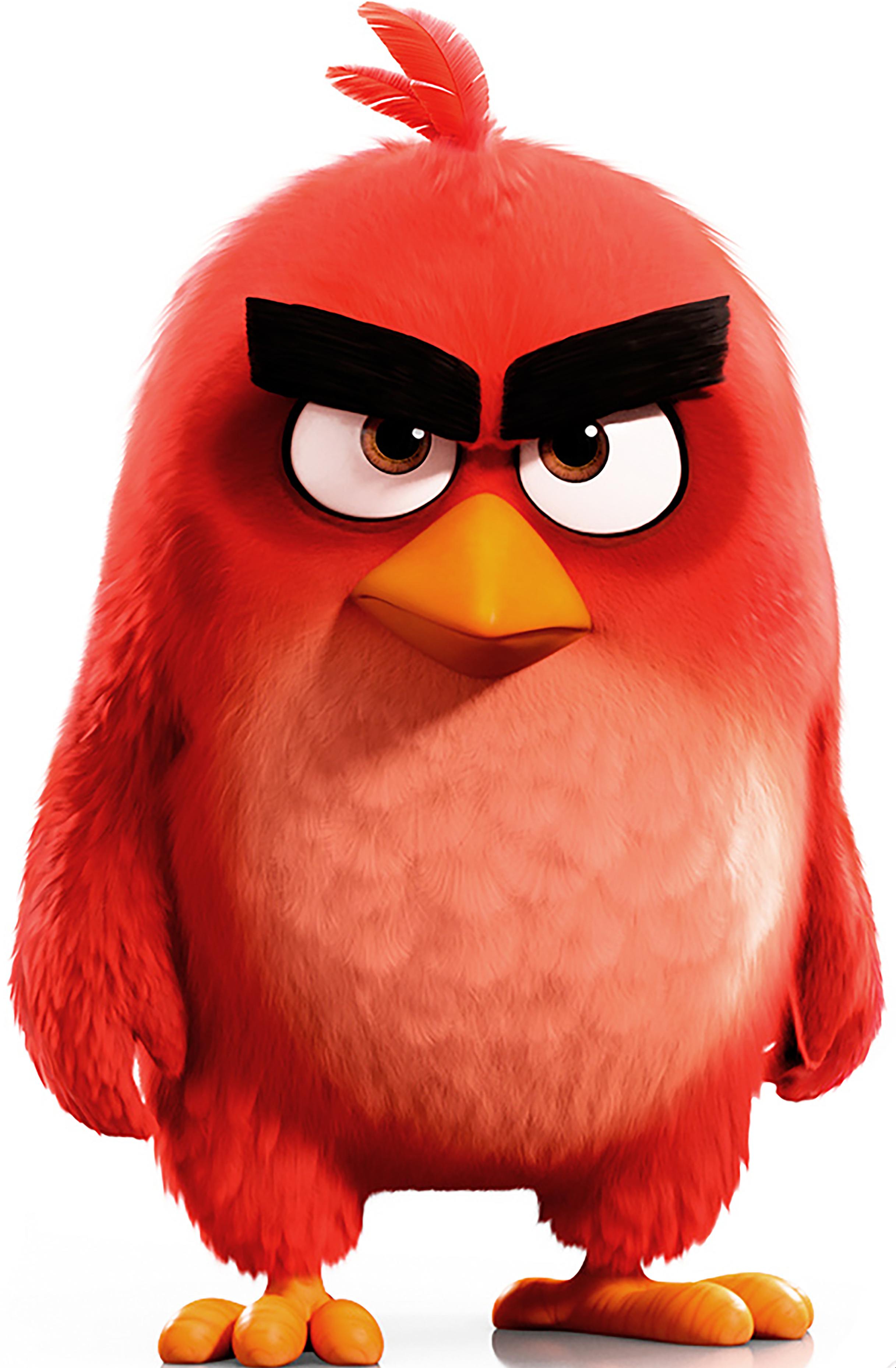 Pin By Arxafad Morante On Angry Birds Pelicula