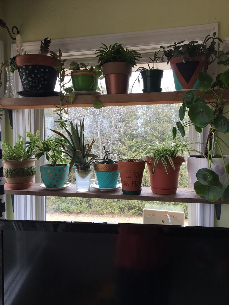 Diy Floating Window Plant Shelf Tutorial With Images Window