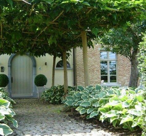 Pin de Sofía men en Lugares para visitar Sofy Pinterest Jardines
