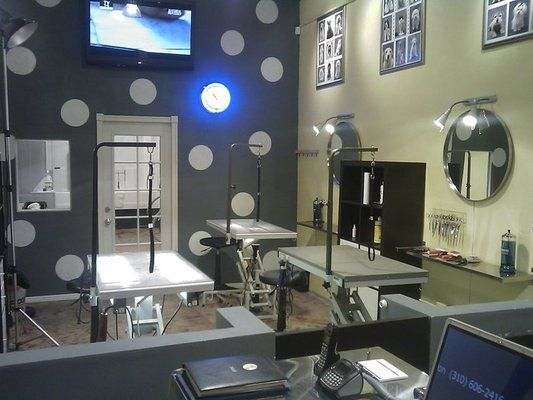 My pet grooming Salon in LA | places that I have decorated ...