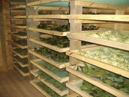 r sultat de recherche d 39 images pour sechoir naturel plantes jardinage tisanerie