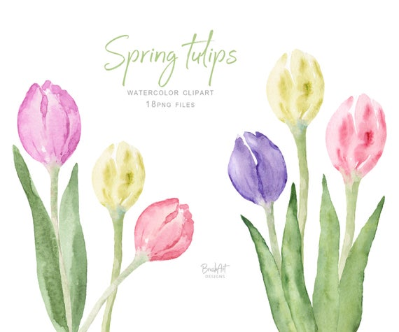 Tulips Clipart Flowers Watercolor Clipart Spring Flowers