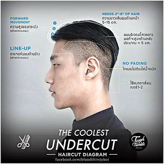 men s haircut styling and grooming guide with photos and diagram rh pinterest com  the rockabilly undercut haircut diagram