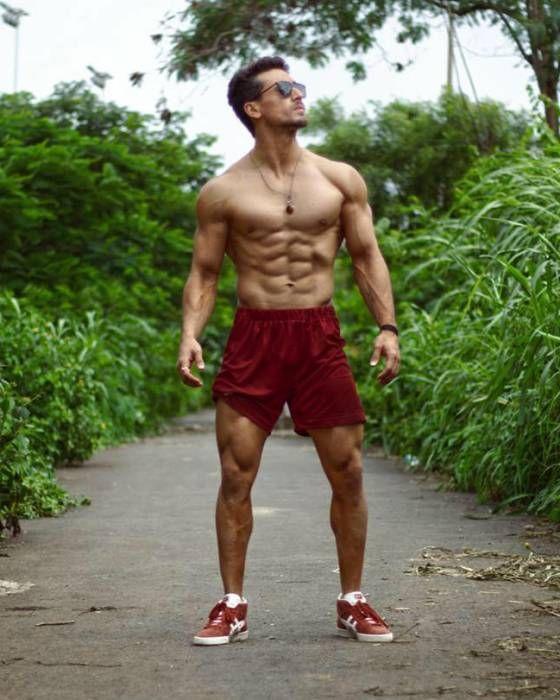 Tiger Shroff Lifestyle, Wiki, Net Worth, Income, Salary ...