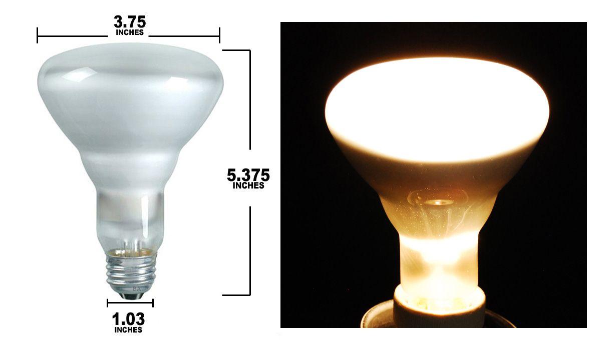 Sylvania 65w 130v Br30 Fl Incandescent Light Bulb Lighting Design Incandescent Light Bulb Light Bulb Lighting