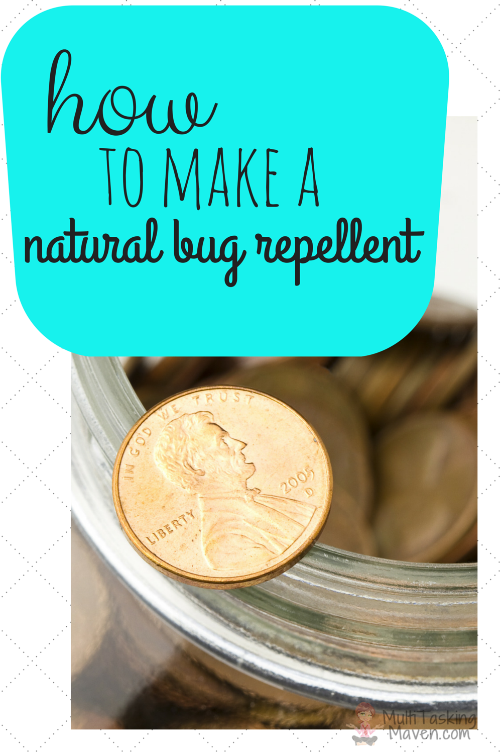 ziploc penny fly control, penny fly repeller, how to make a natural bug repellent