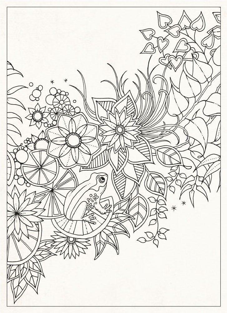 JOHANNA BASFORDArt Therapy, Antistress Coloring, Secret Gardens ...