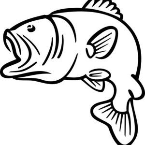Bass Fish Jumping Outline Sketch Coloring Page Dads 70th