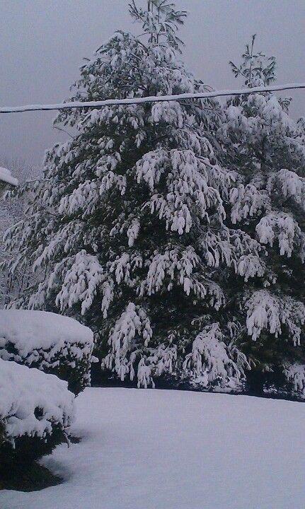 First big snow.