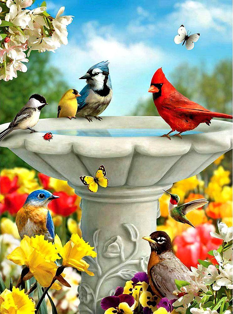 Image result for Garden friends images