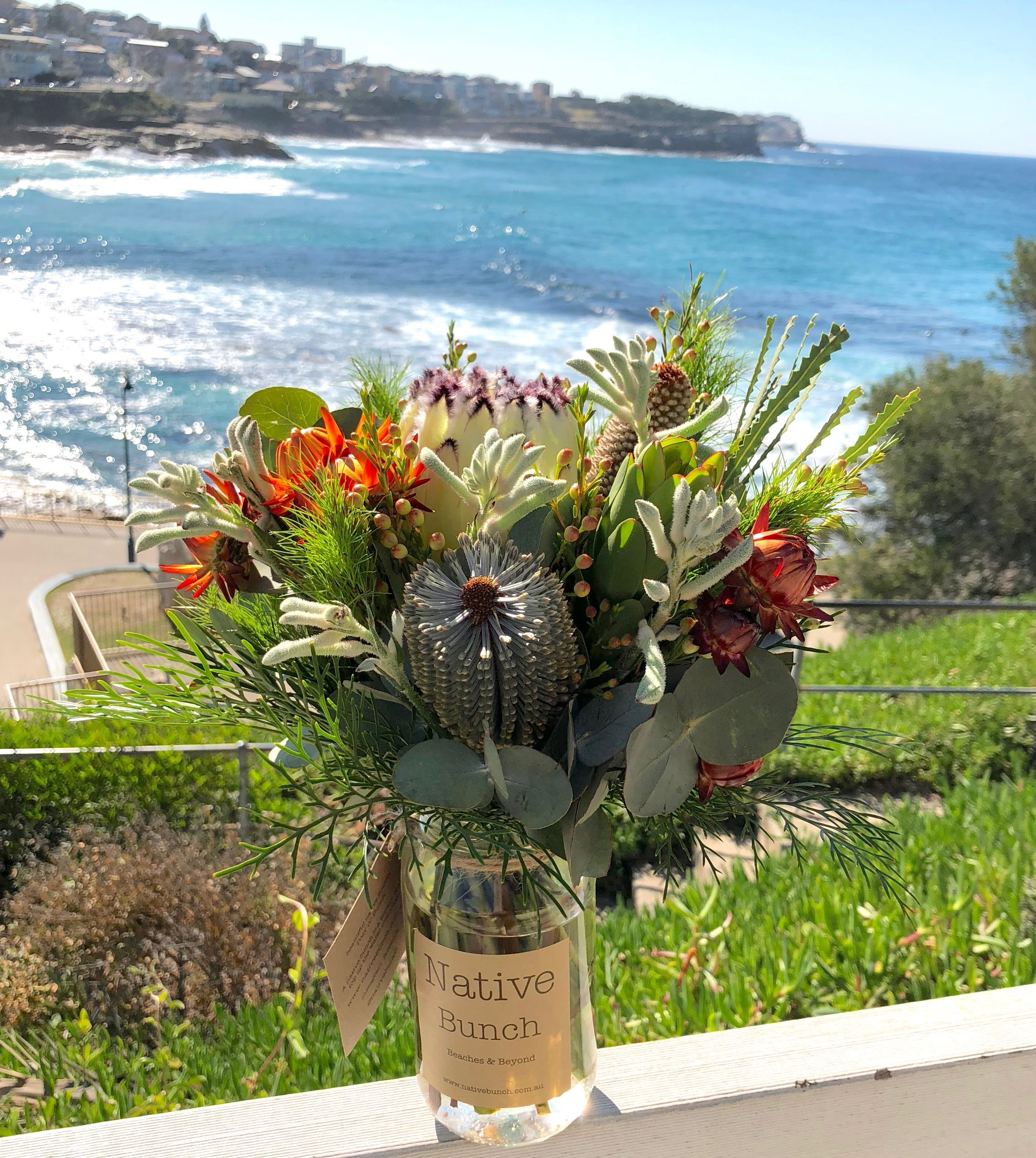 Our native flower posy taking in the view at Bronte Beach
