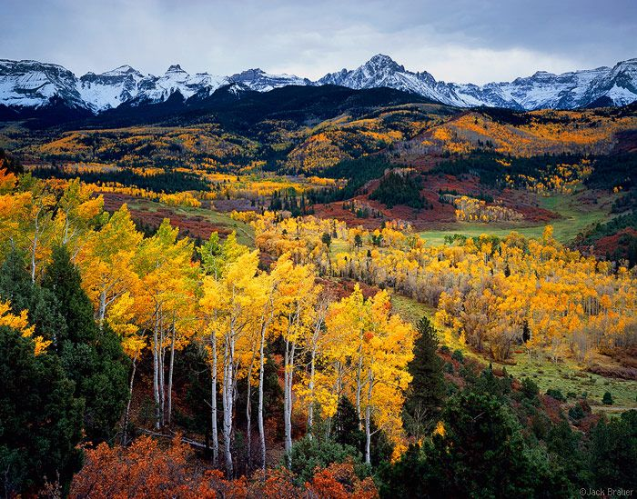 Fall colors, Colorado.