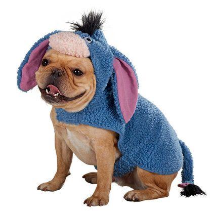 Halloween Costume Ideas For Pets Eeyore Large Dog Costumes