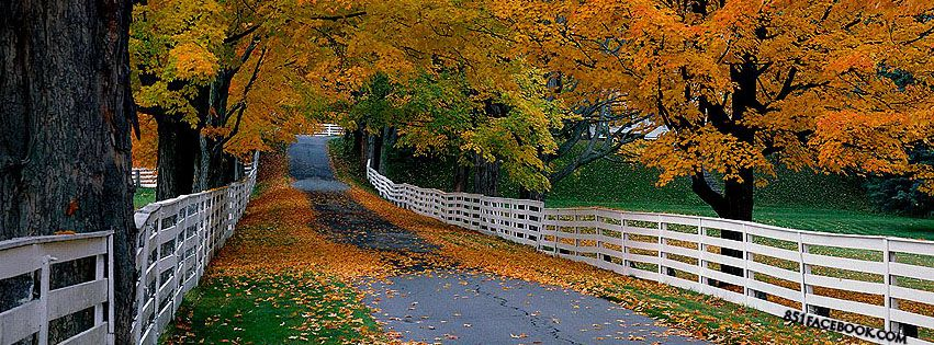 Fall Facebook Covers | Fall Facebook Cover | Fabulous Fall ...