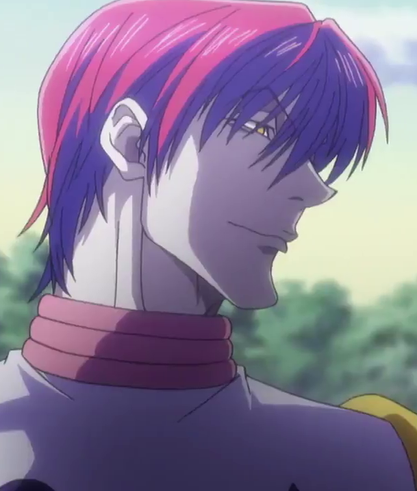 Hisoka With Horrible Hair Hisoka Hunter Anime Hunterxhunter Hisoka