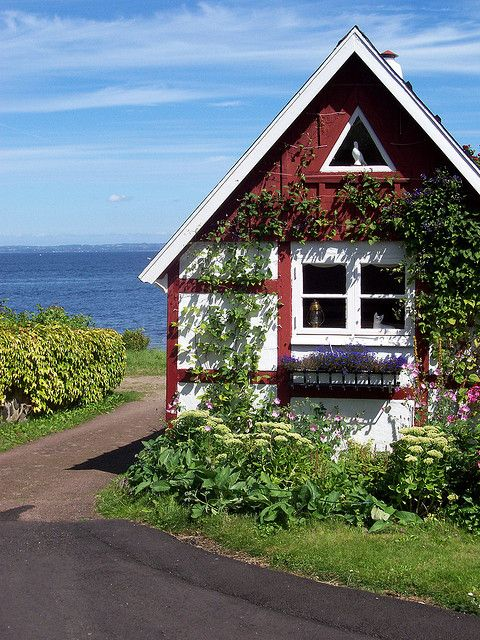 Love the triangle window in the gable! You don't see many windows that shape, because they typically aren't made to be opened - but whenever I do see one, I love the look! Small house home tiny cottage.