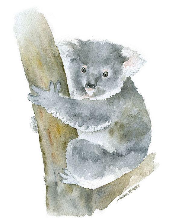 Koala Watercolor Painting 11 X 14 Giclee Print Animal