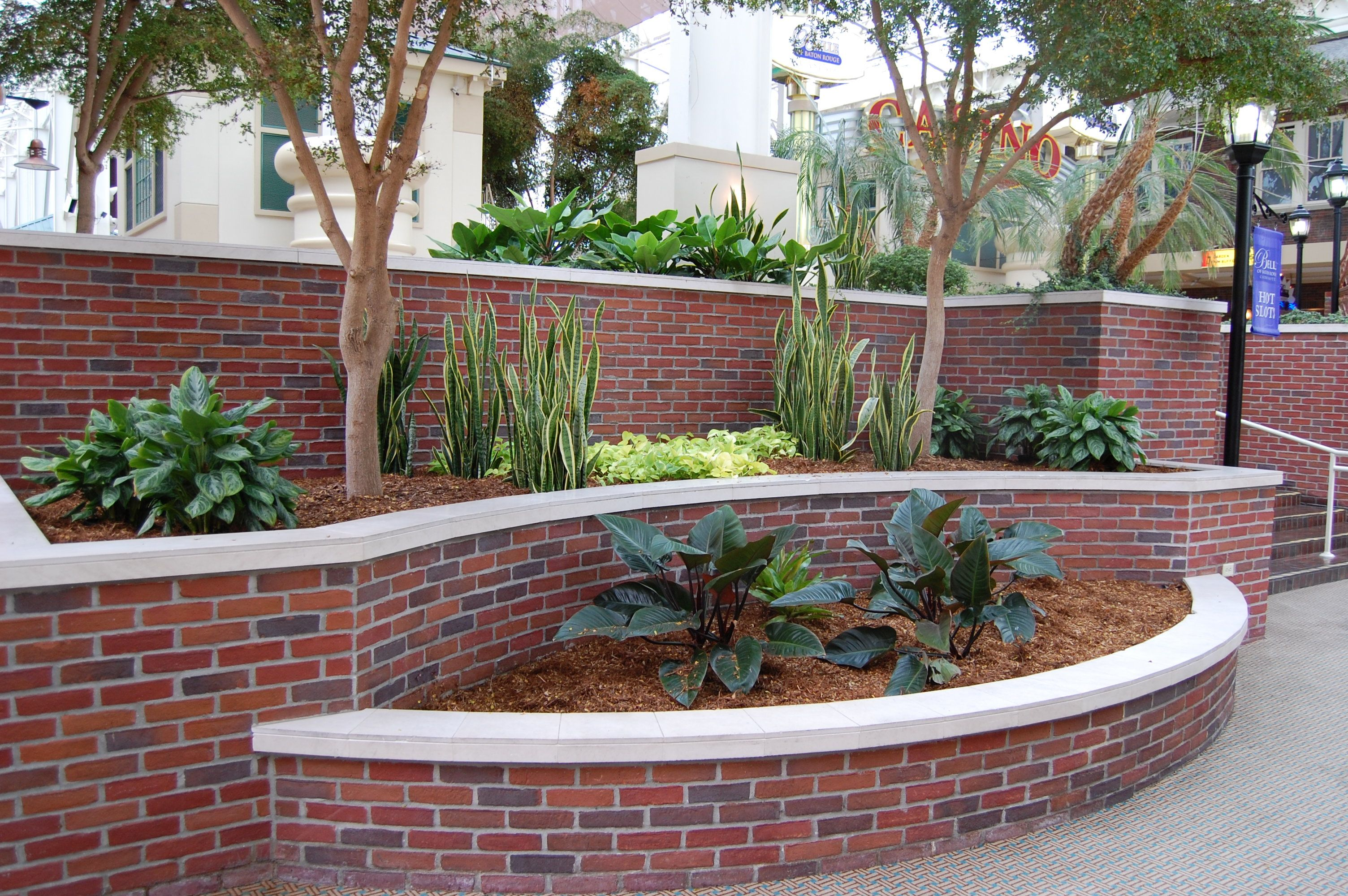 Multi-level garden idea that I am going for in the aviary.  :