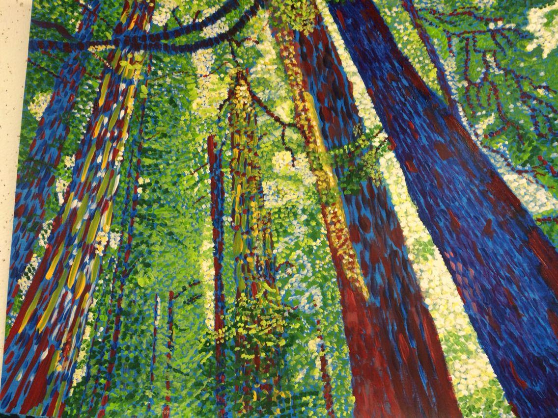 Forrest sunlight