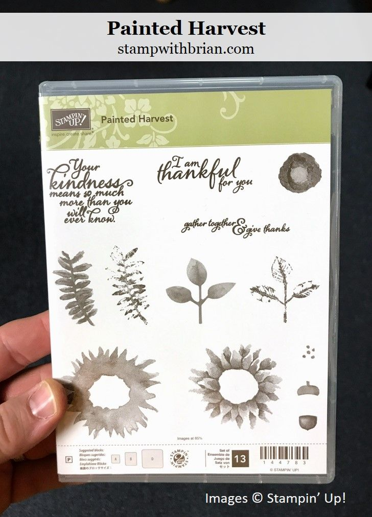 Painted Harvest, Stampin' Up! 2017 Holiday Catalog