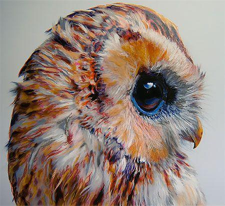 Owls By John Pusateri Pastel Artwork, Watercolor Bird, Owls Drawing
