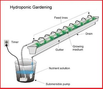 Top 25 ideas about hydroponicsaquaponics on Pinterest Gardens