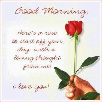 Good Morning My Friends Here S A Beautiful Rose To Begin Your Day With May Beauty Surround Yo Good Morning My Friend Good Morning Beautiful Good Morning Love