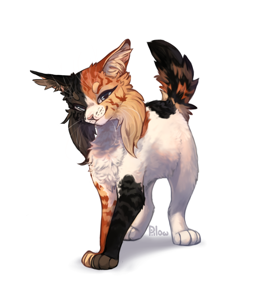 Commission by GrayPillow | Warrior cats fan art, Warrior cats, Warrior cat  drawings