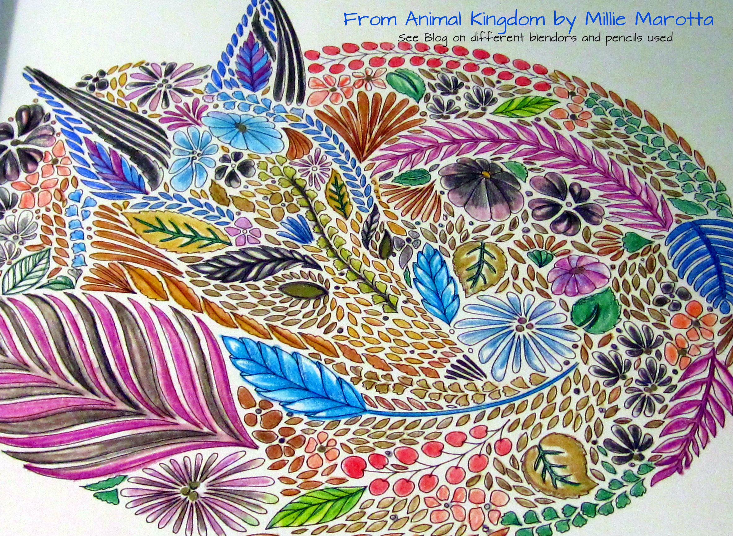 Another Great Illustration Done By Millie Marotta In The Animal Kingdom Coloring Book I Used Water Color Pencils And Tombow Blender