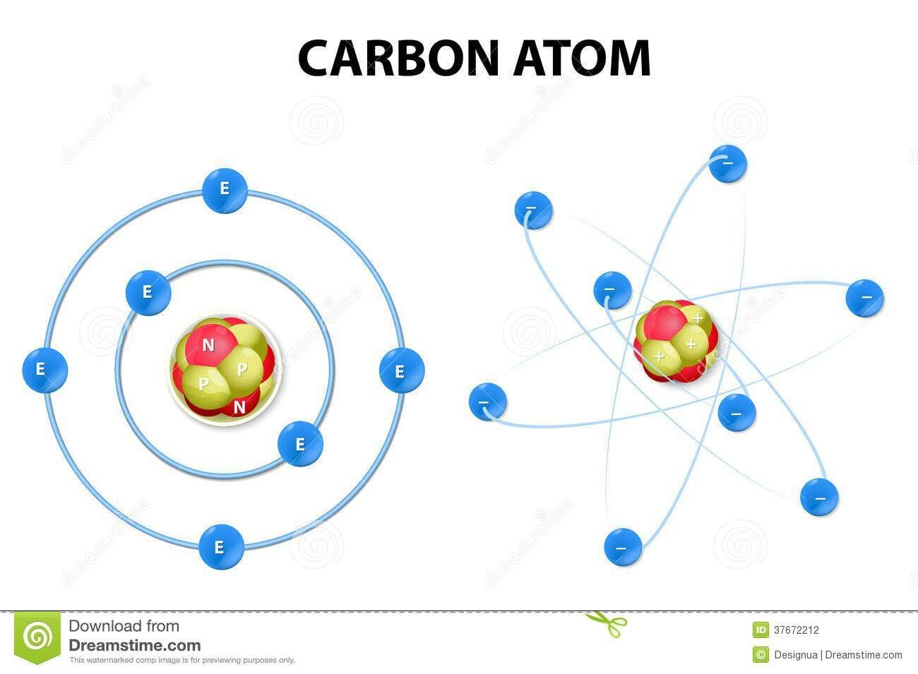 Estructura De Un átomo De Carbono Tatuaje De átomo