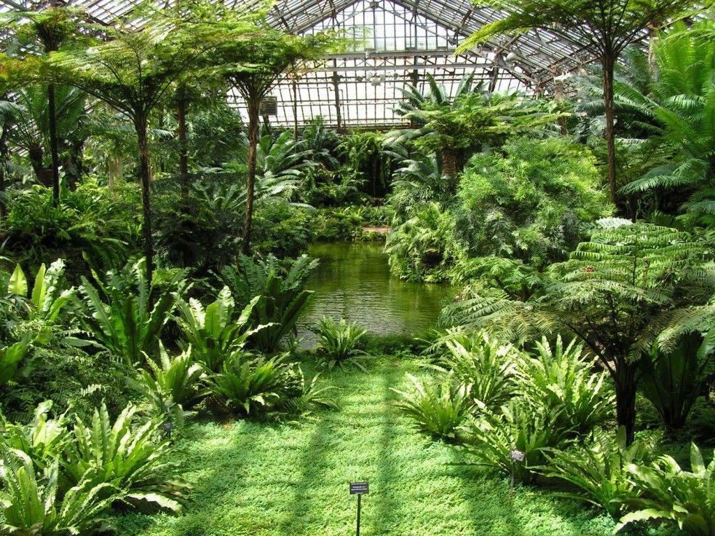 The Dream Conservatory With A Pond Fountain Paths And 400 x 300