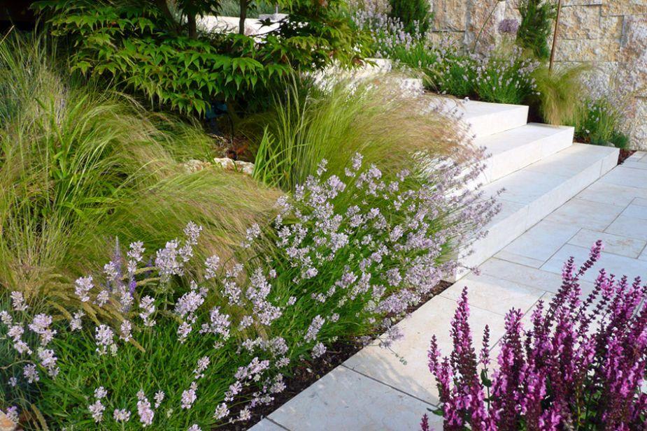 Gartenarchitektur Terramanus Landschaftsarchitektur Pflanzen - gartenarchitektur