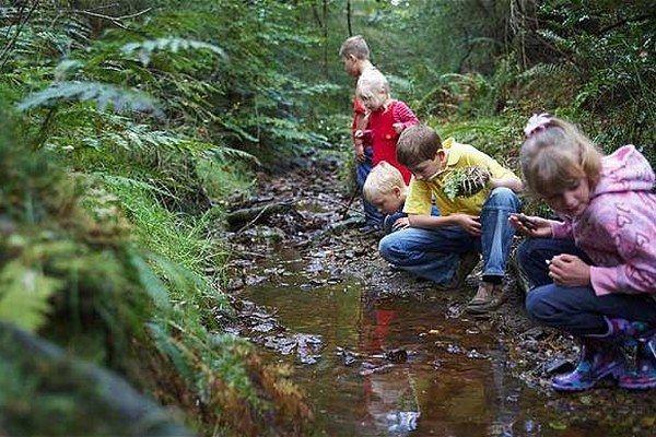 KOŠICE 23. februára (SITA) – Občianske združenie Sosna rozbieha na Slovensku ojedinelý projekt pre deti Ide sa do lesa. Bude obsahovať 50 aktivít, ktoré by deti mali zažiť skôr, než dosiahnu 13 rokov.