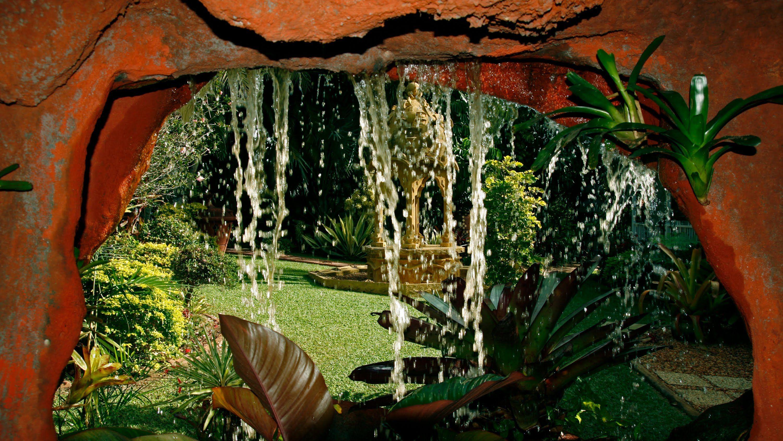 wonderland tropical garden - Tropical Garden 2016