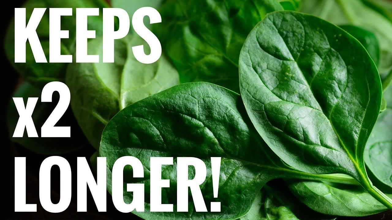 Quick Tip Easiest Way to Keep Spinach Fresh For Longer