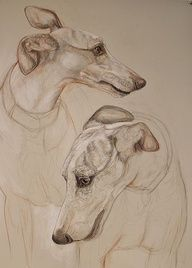 Pin By Juliann Farmer Howlett On Dog Animal Drawings Dog Art Art