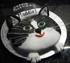 Image result for cat shaped birthday cake crafts for kids