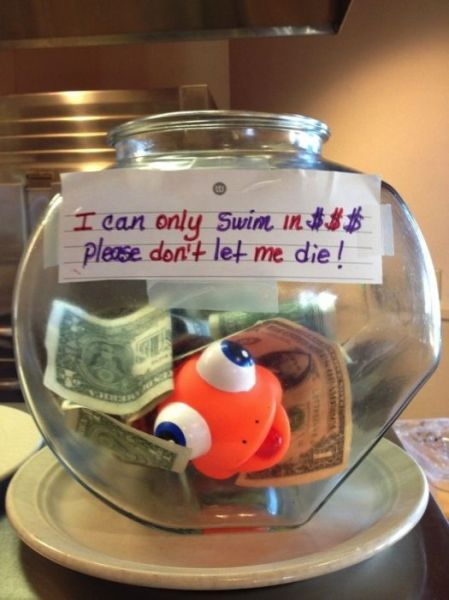 Awesomely Creative Tip Jars Funny Tip Jars Funny Tips Tip Jars